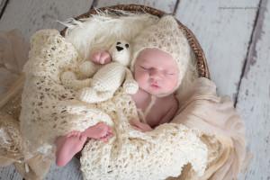 north pittsburgh newborn photography