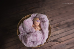 newborn baby photography pittsburgh
